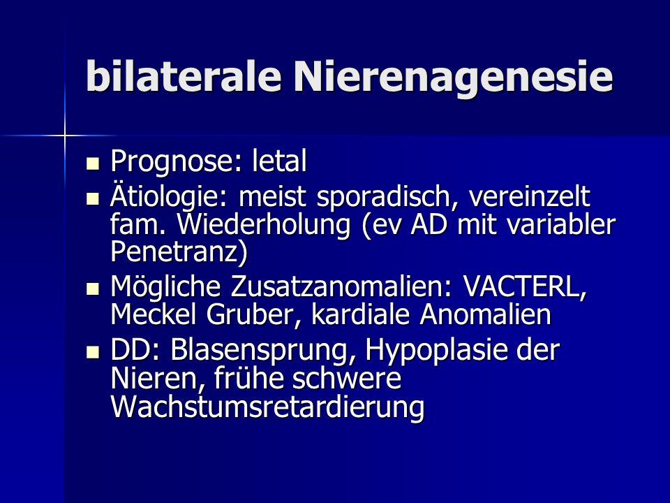 bilaterale Nierenagenesie