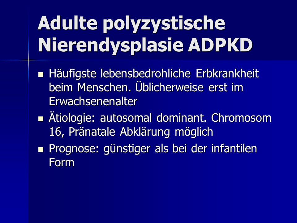 Adulte polyzystische Nierendysplasie ADPKD
