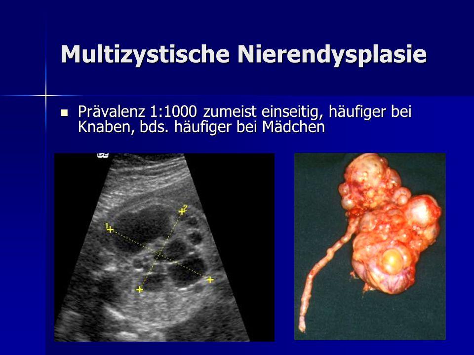 Multizystische Nierendysplasie