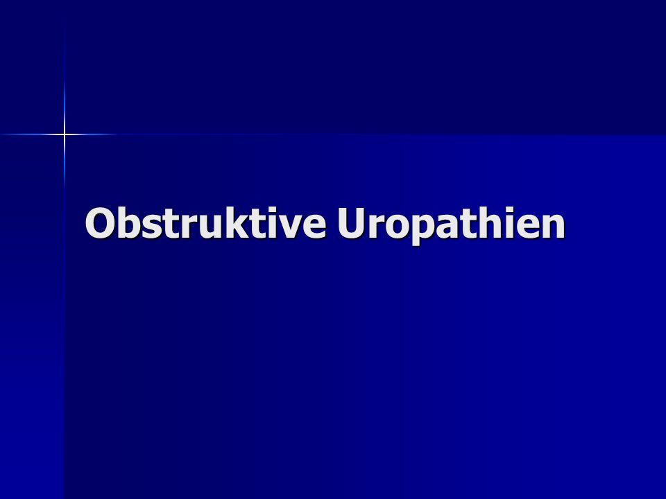 Obstruktive Uropathien