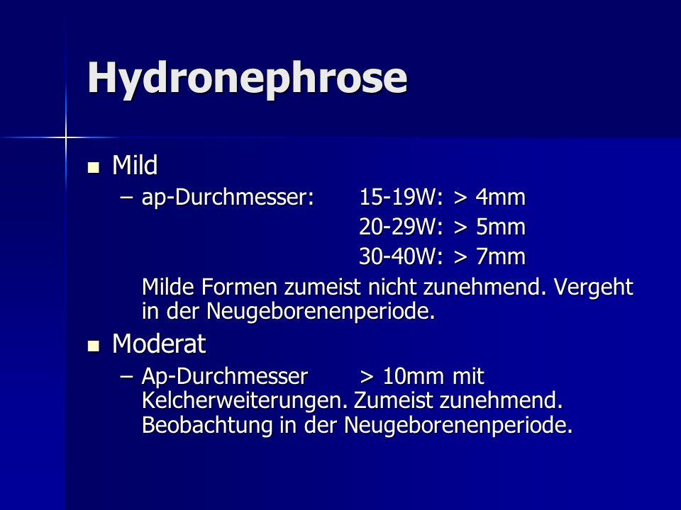 Hydronephrose Mild Moderat ap-Durchmesser: 15-19W: > 4mm