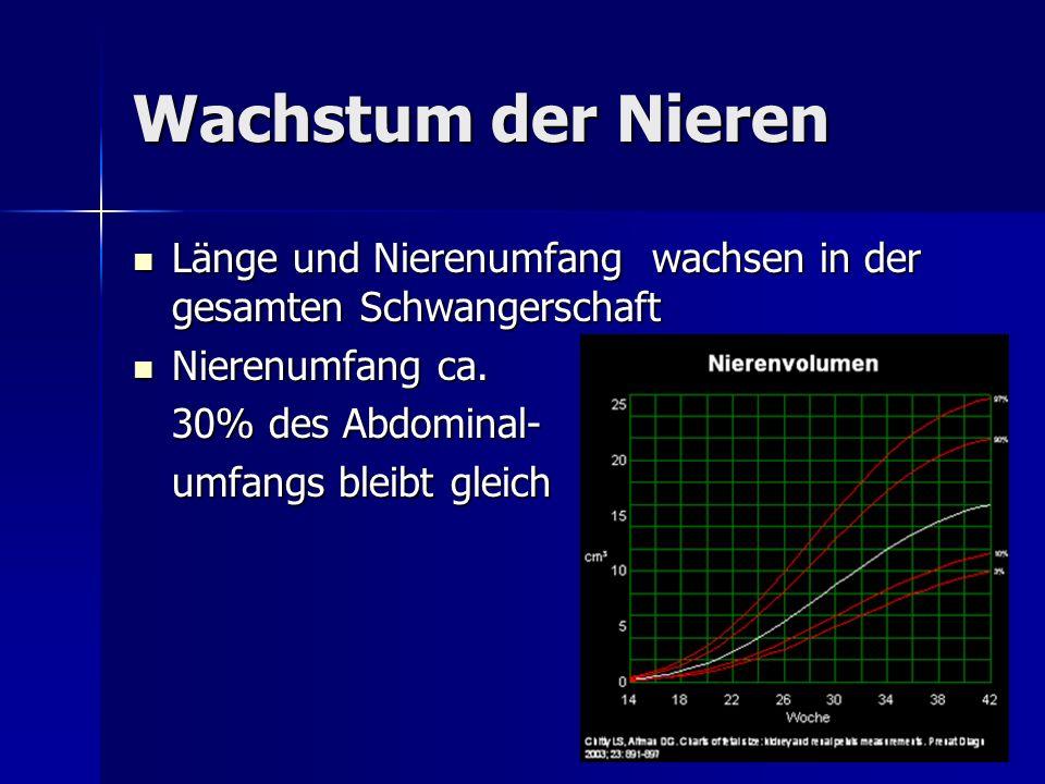 Wachstum der Nieren Länge und Nierenumfang wachsen in der gesamten Schwangerschaft. Nierenumfang ca.
