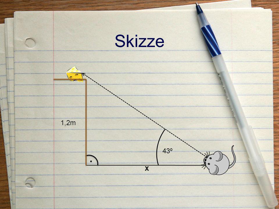 Skizze 1,2m x 43º •