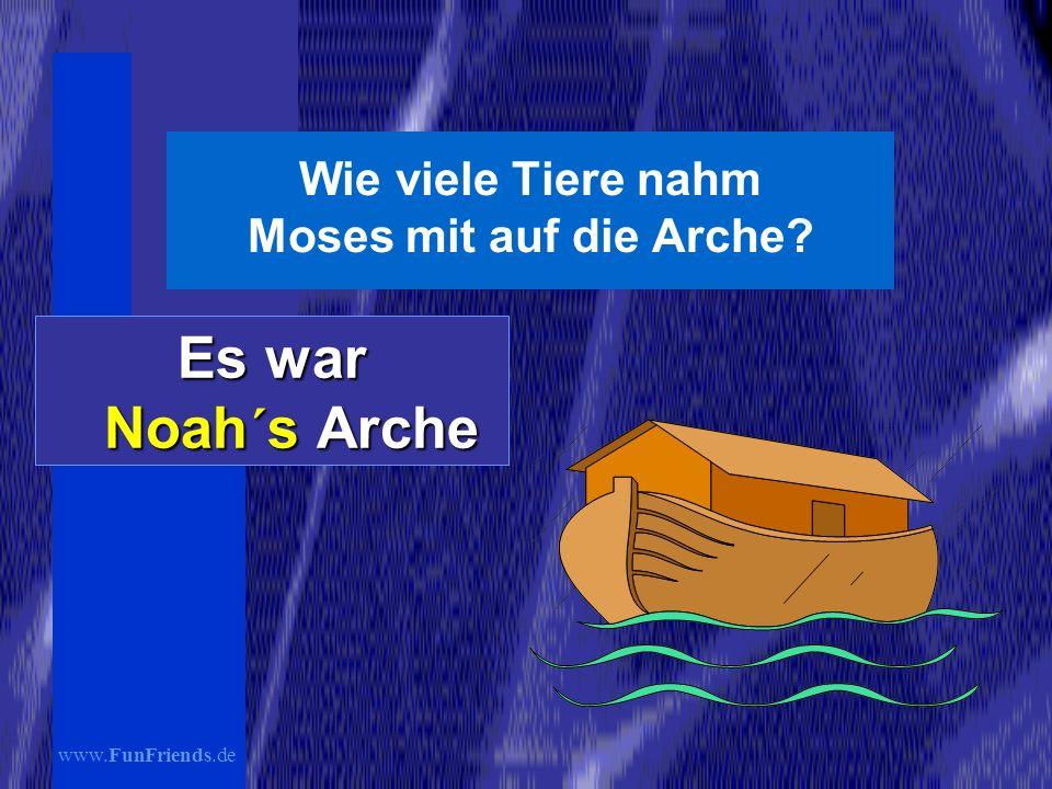 Wie viele Tiere nahm Moses mit auf die Arche