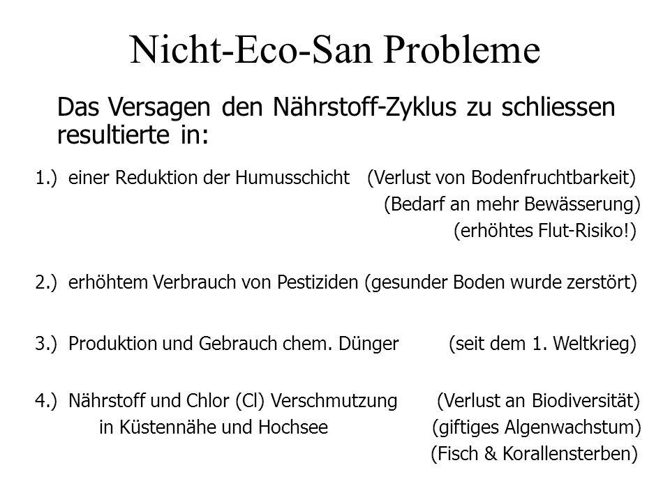 Nicht-Eco-San Probleme