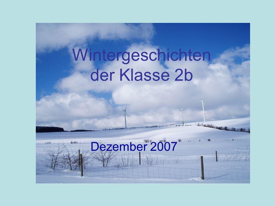 Wintergeschichten der Klasse 2b