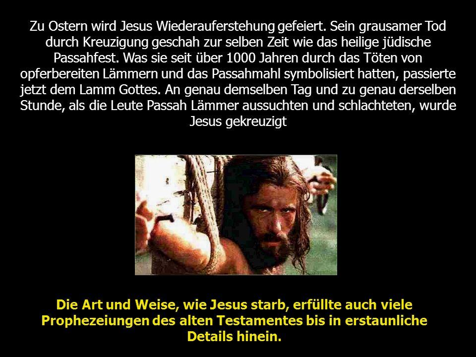 Zu Ostern wird Jesus Wiederauferstehung gefeiert