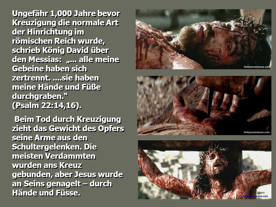 """Ungefähr 1,000 Jahre bevor Kreuzigung die normale Art der Hinrichtung im römischen Reich wurde, schrieb König David über den Messias: """"... alle meine Gebeine haben sich zertrennt. ....sie haben meine Hände und Füße durchgraben. (Psalm 22:14,16)."""