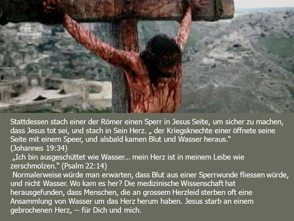 """Stattdessen stach einer der Römer einen Sperr in Jesus Seite, um sicher zu machen, dass Jesus tot sei, und stach in Sein Herz. """" der Kriegsknechte einer öffnete seine Seite mit einem Speer, und alsbald kamen Blut und Wasser heraus. (Johannes 19:34)"""