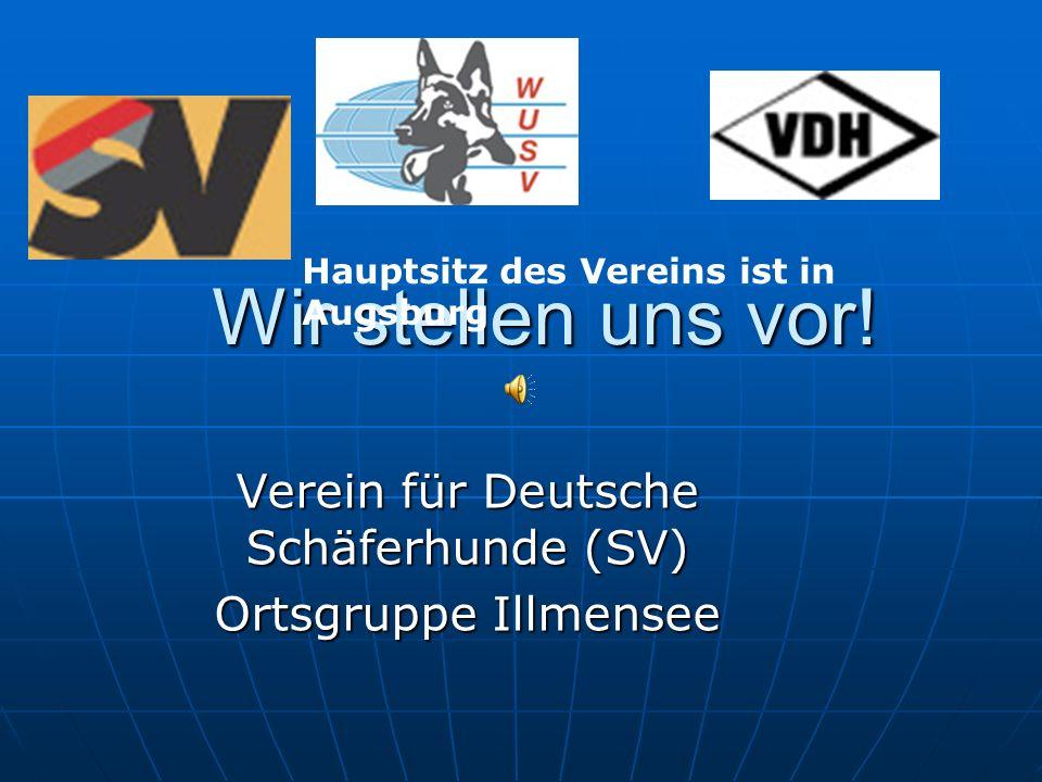 Verein für Deutsche Schäferhunde (SV) Ortsgruppe Illmensee
