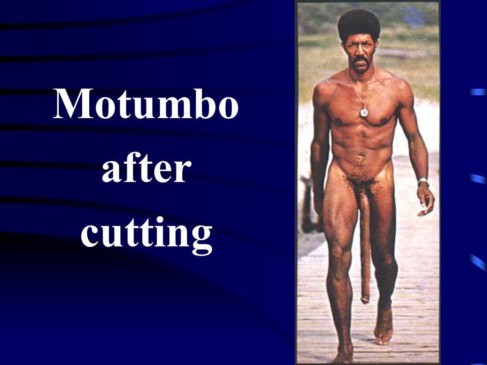 Motumbo after cutting