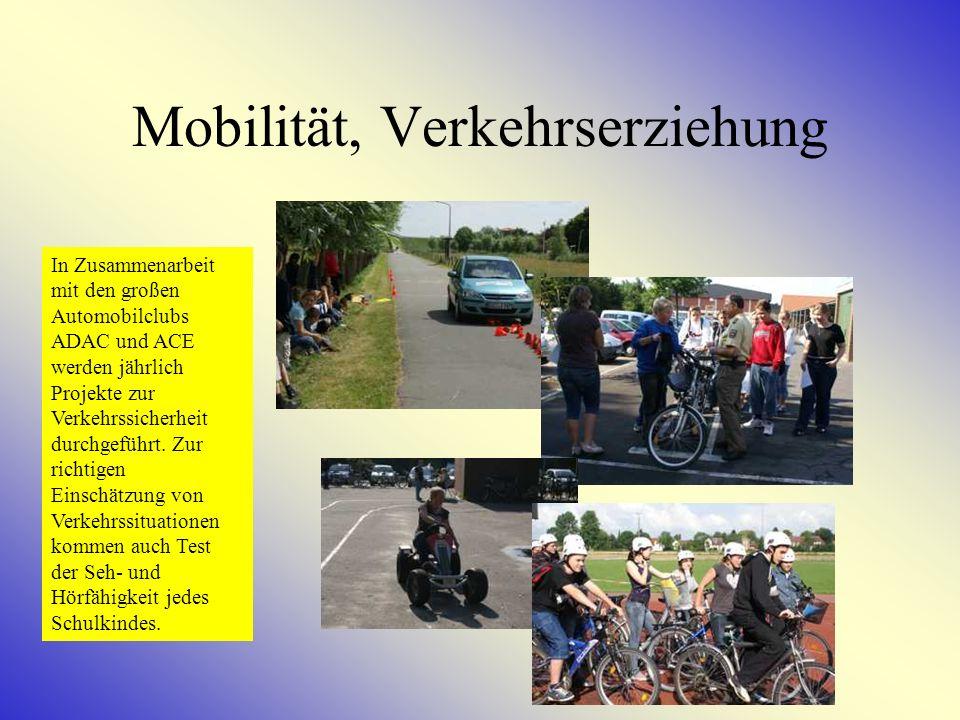 Mobilität, Verkehrserziehung