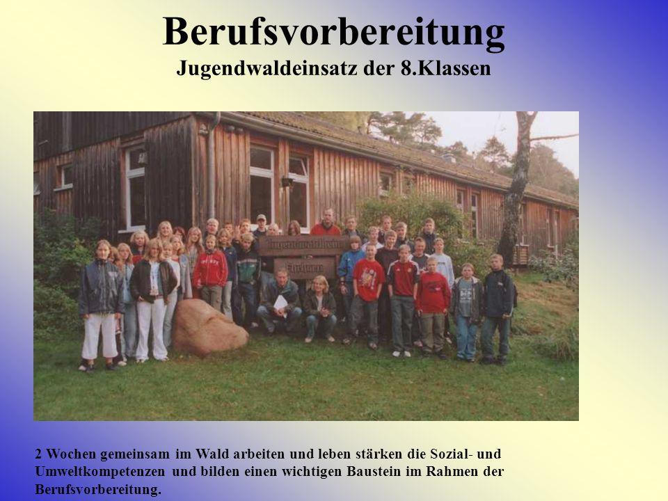 Berufsvorbereitung Jugendwaldeinsatz der 8.Klassen