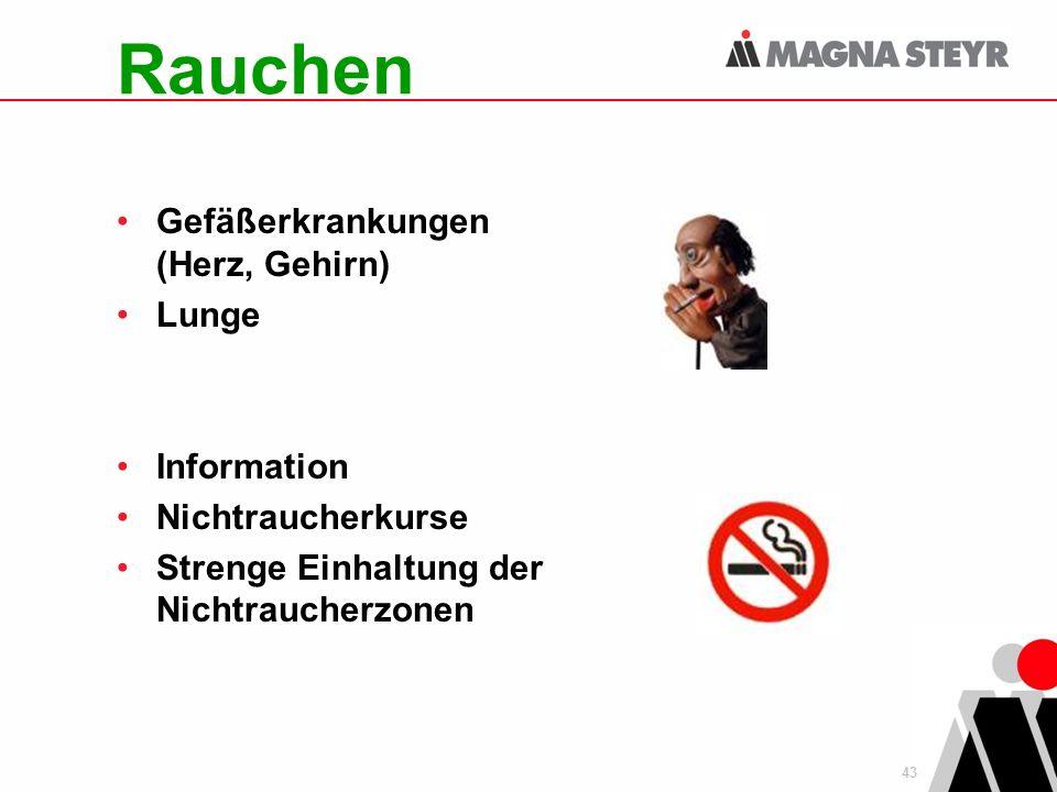 Rauchen Gefäßerkrankungen (Herz, Gehirn) Lunge Information