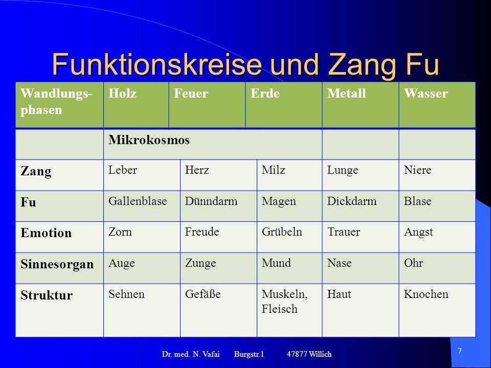 Funktionskreise und Zang Fu