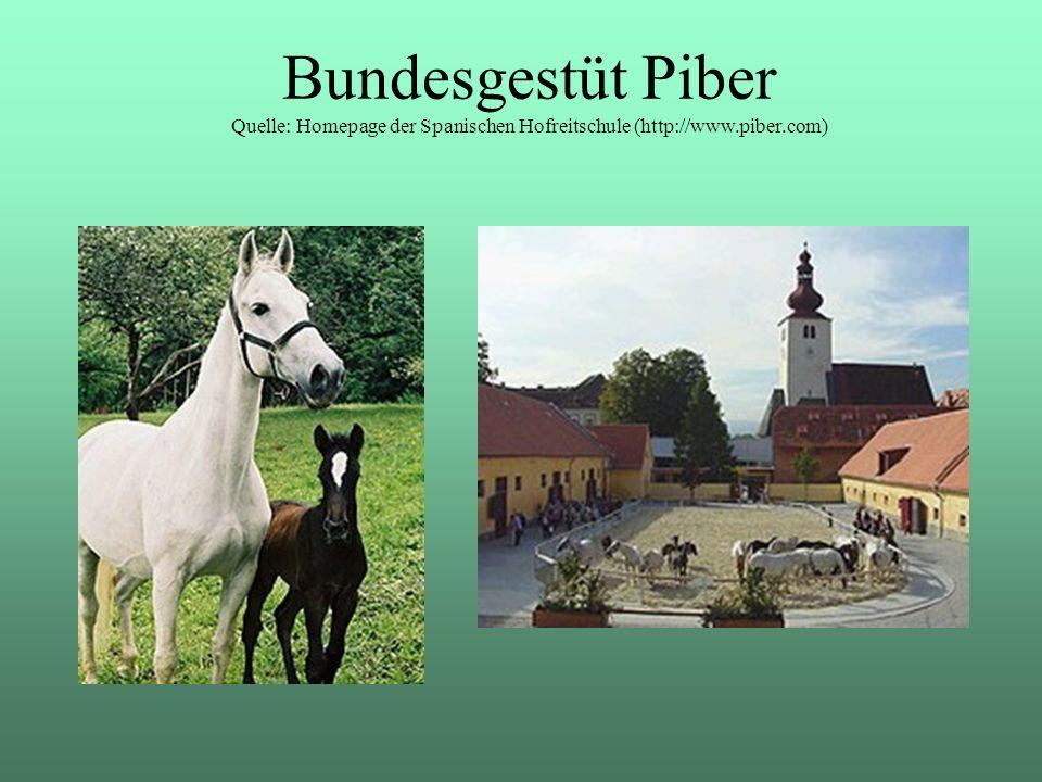 Bundesgestüt Piber Quelle: Homepage der Spanischen Hofreitschule (http://www.piber.com)