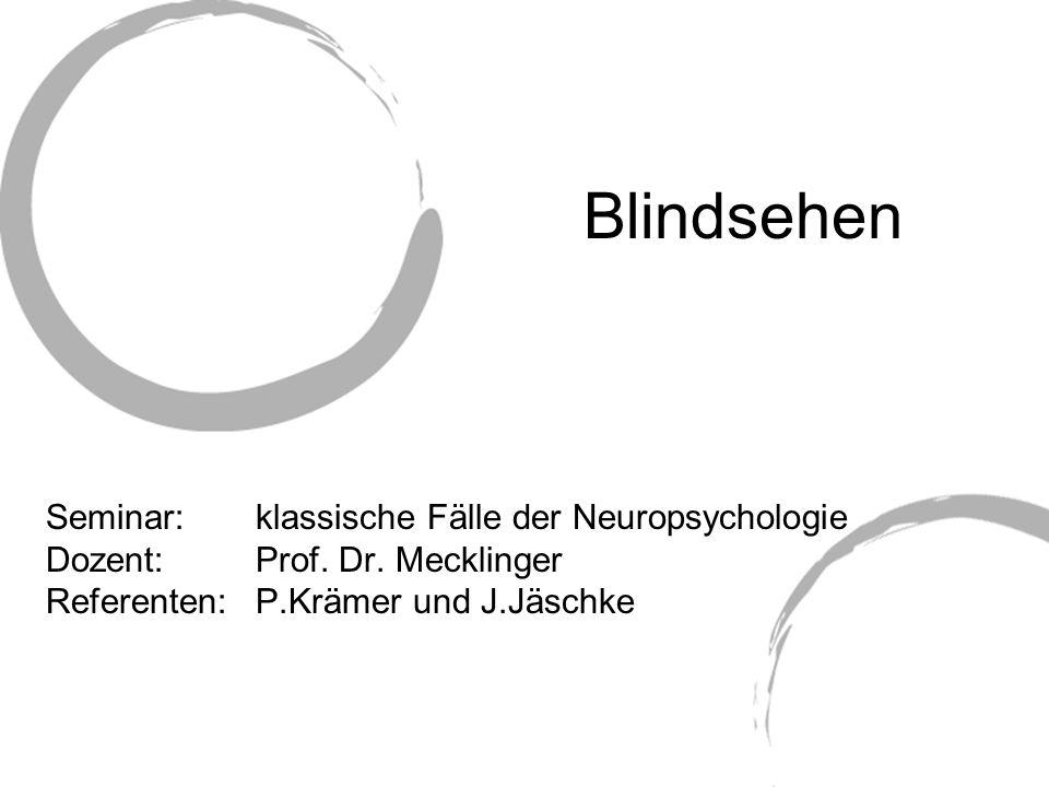Blindsehen Seminar: klassische Fälle der Neuropsychologie