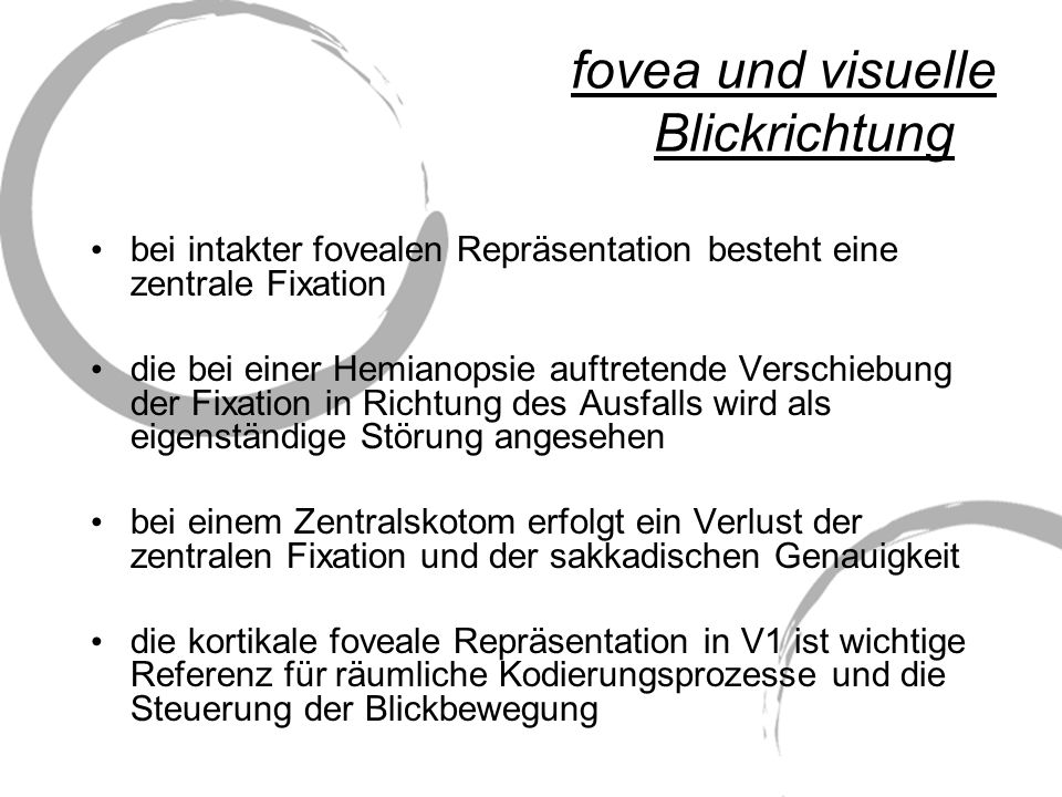 fovea und visuelle Blickrichtung