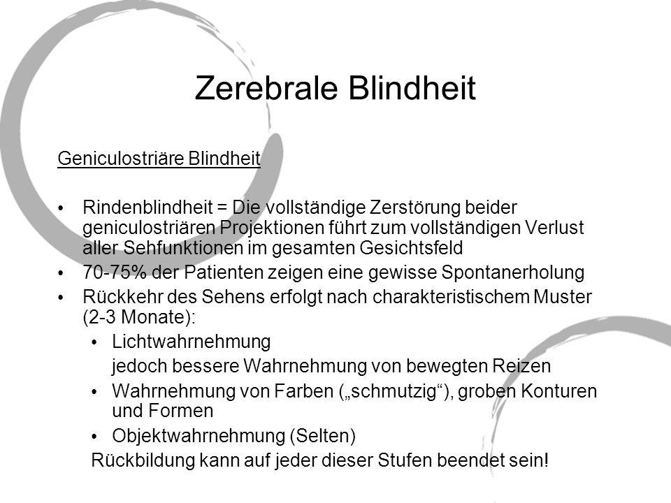 Zerebrale Blindheit Geniculostriäre Blindheit