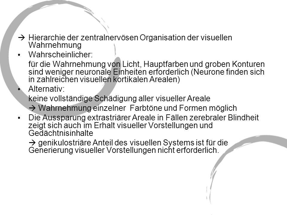 Hierarchie der zentralnervösen Organisation der visuellen Wahrnehmung