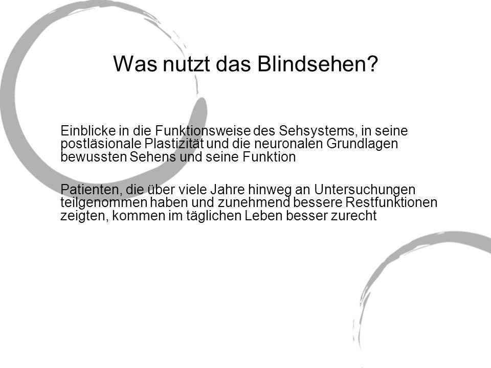 Was nutzt das Blindsehen