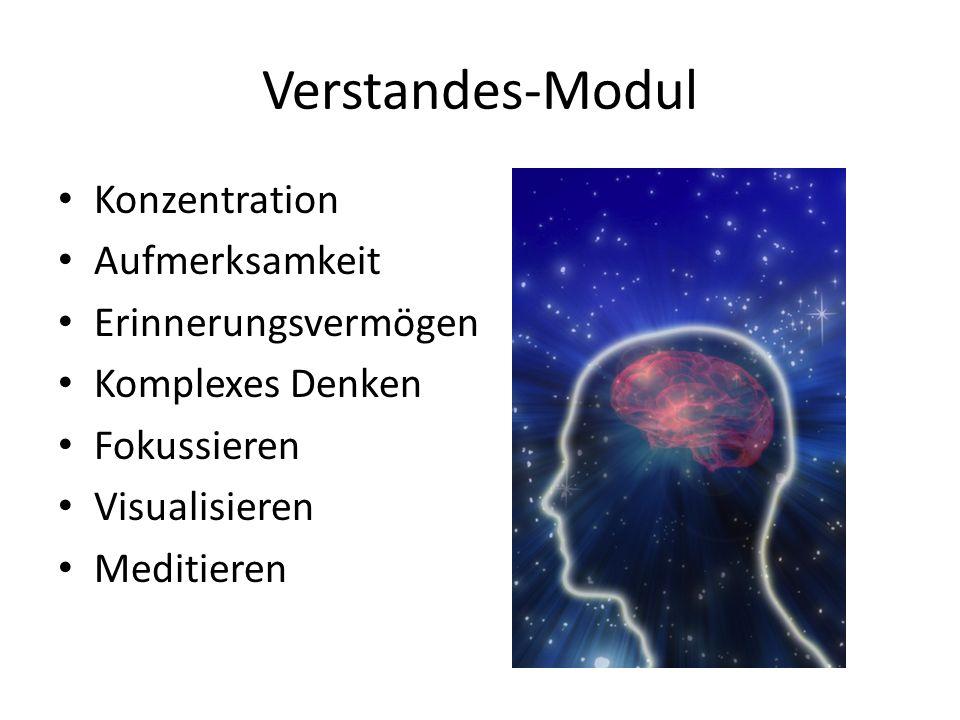 Verstandes-Modul Konzentration Aufmerksamkeit Erinnerungsvermögen