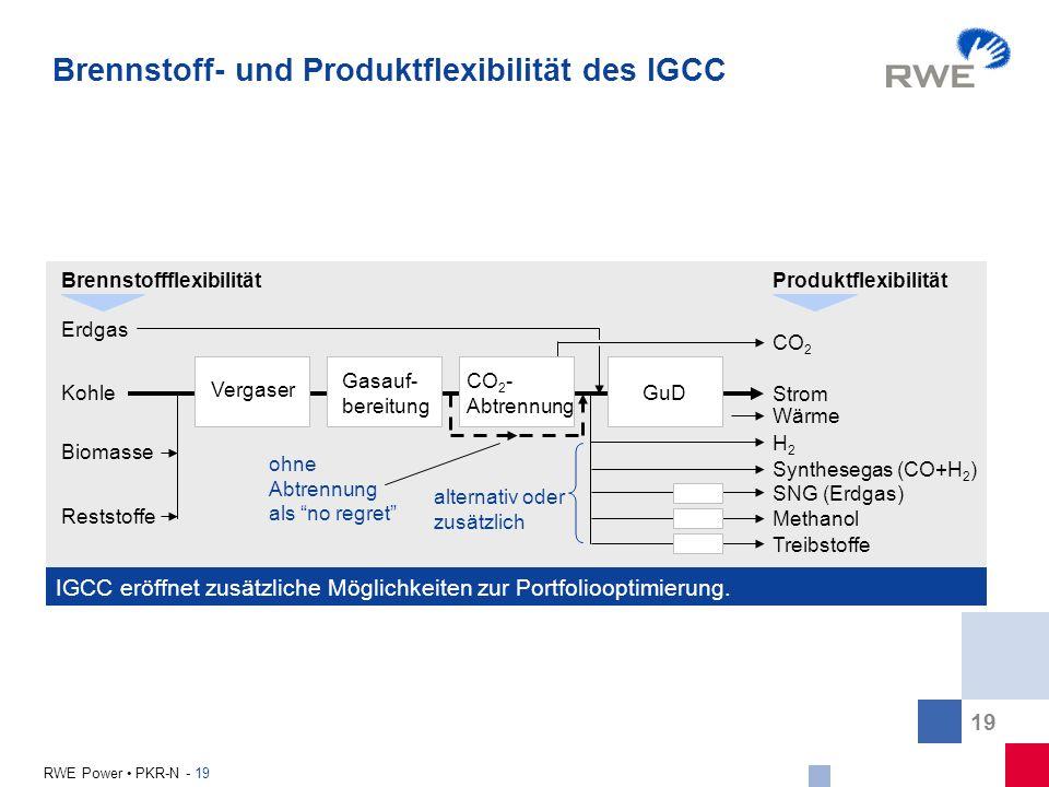 Brennstoff- und Produktflexibilität des IGCC