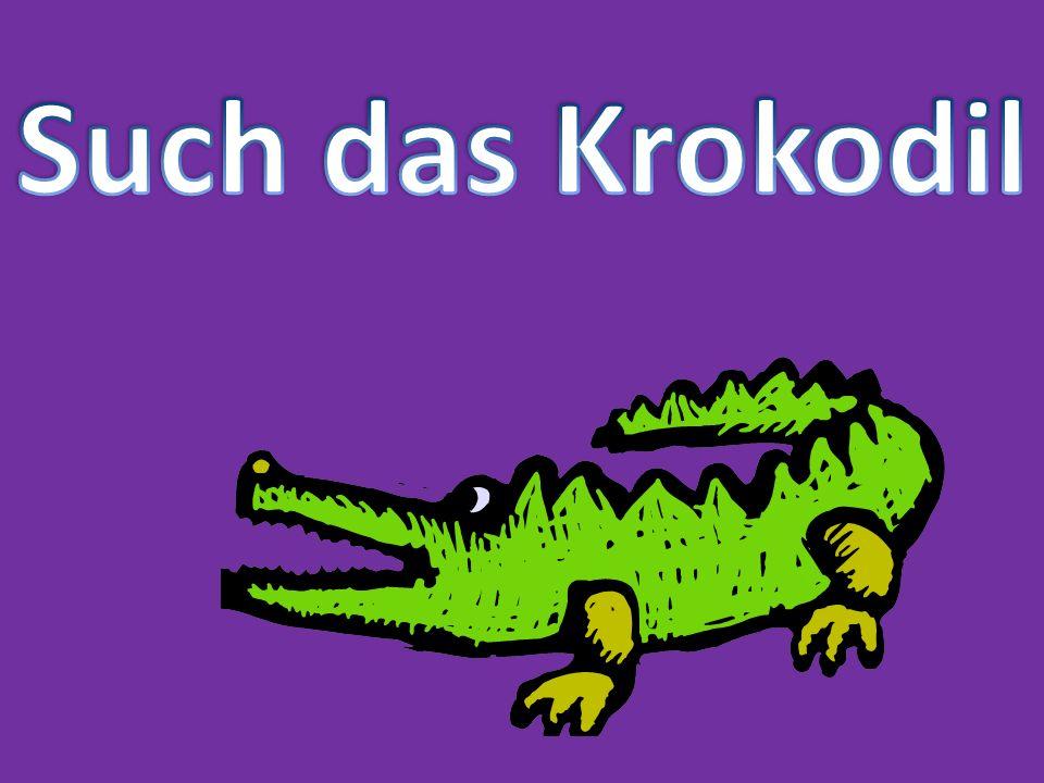 Such das Krokodil