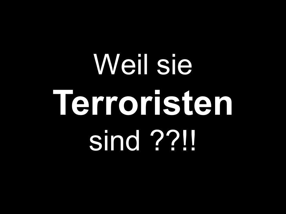 Weil sie Terroristen sind !!