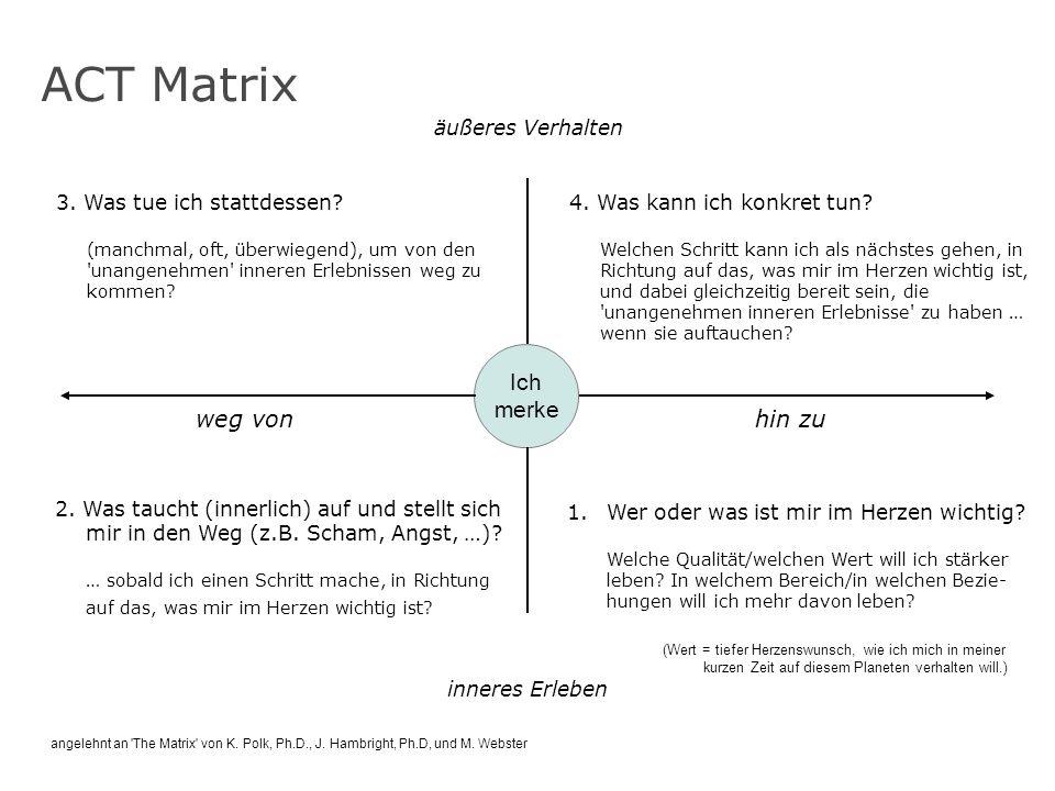 ACT Matrix Ich merke weg von hin zu äußeres Verhalten