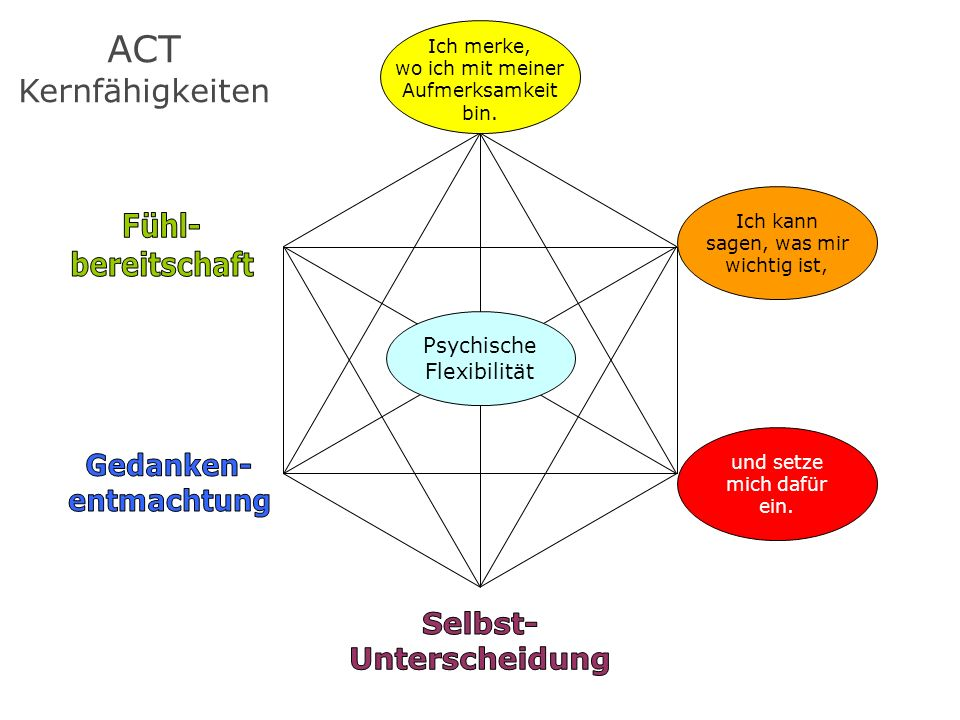 ACT Kernfähigkeiten Fühl- bereitschaft Beherzt Gedanken- Tun