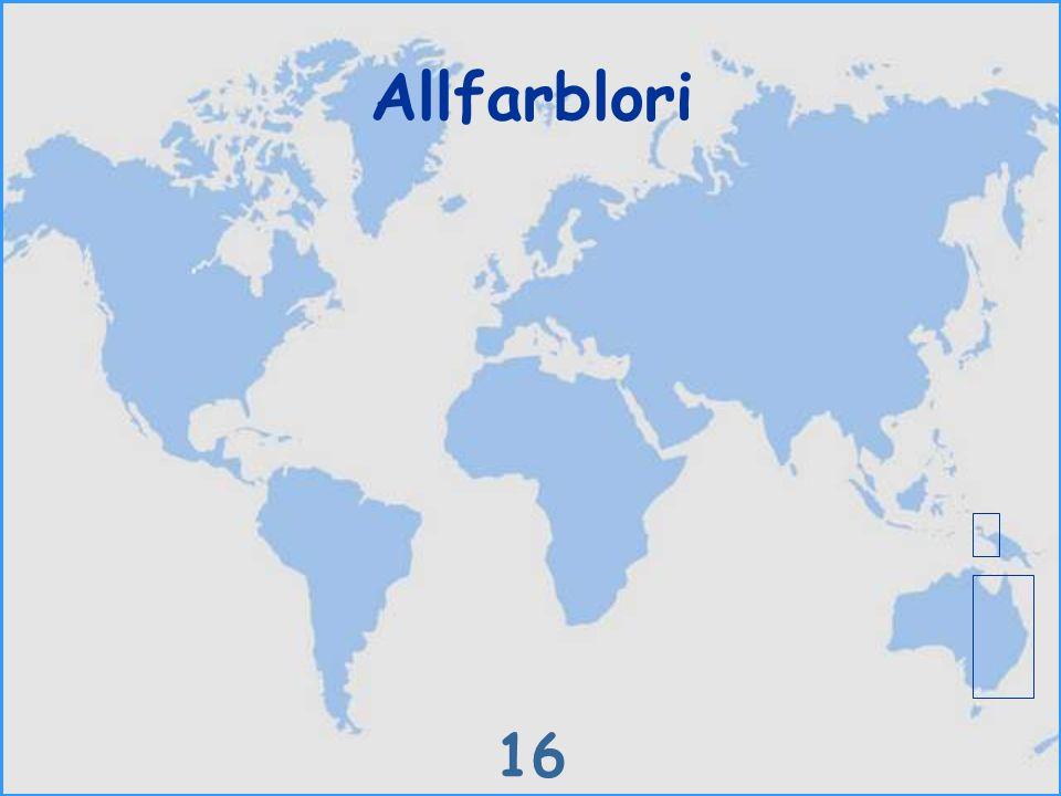 Allfarblori 16