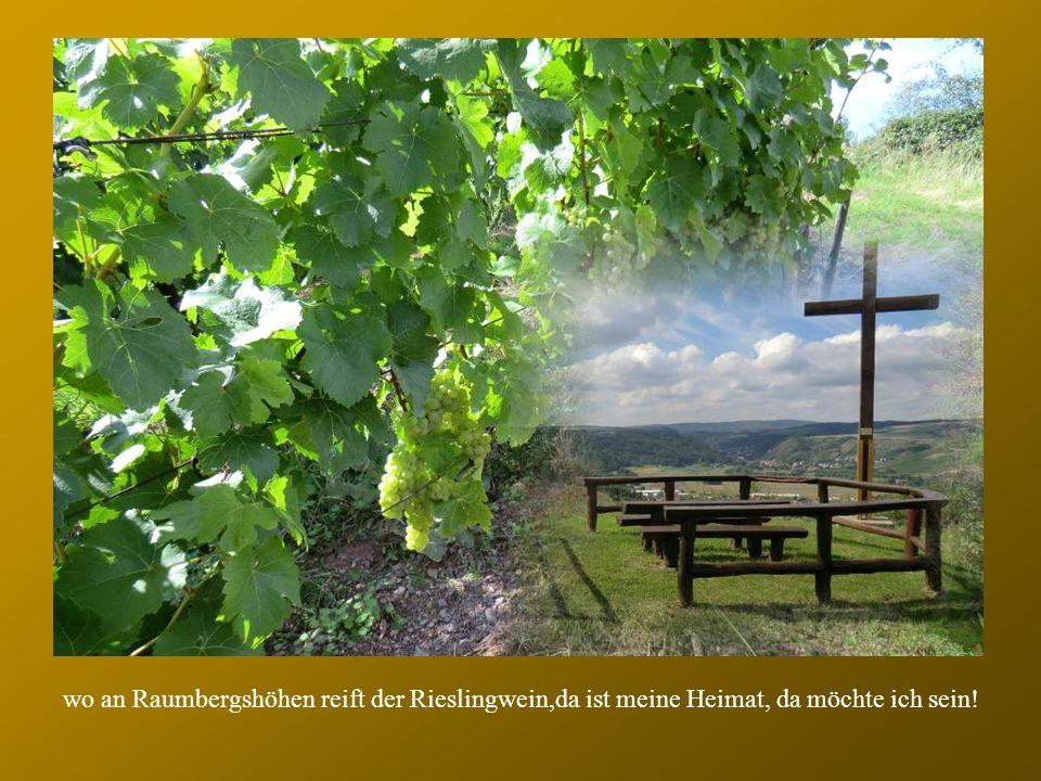 wo an Raumbergshöhen reift der Rieslingwein,da ist meine Heimat, da möchte ich sein!