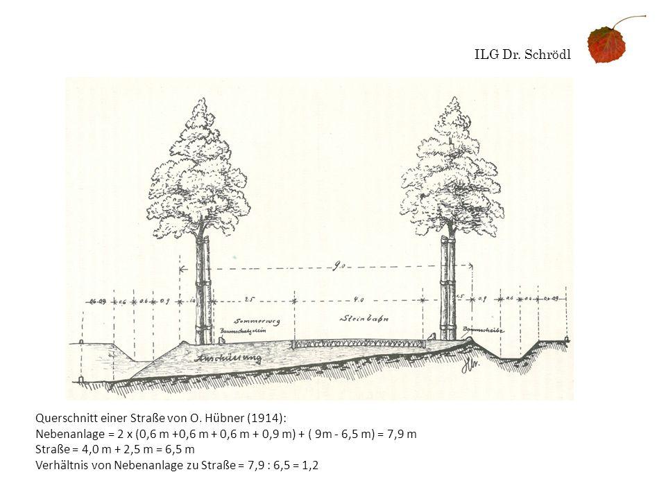 ILG Dr. Schrödl Querschnitt einer Straße von O. Hübner (1914): Nebenanlage = 2 x (0,6 m +0,6 m + 0,6 m + 0,9 m) + ( 9m - 6,5 m) = 7,9 m.