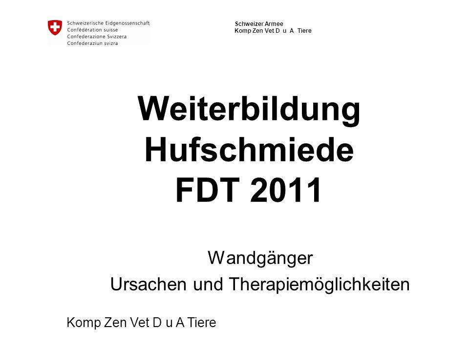 Weiterbildung Hufschmiede FDT 2011
