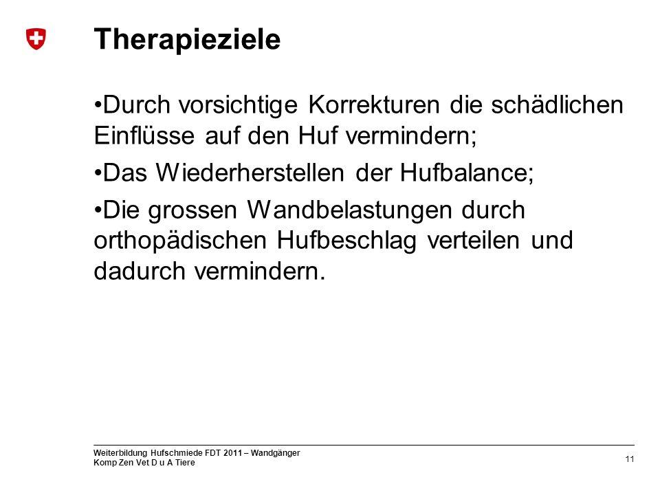 Therapieziele Durch vorsichtige Korrekturen die schädlichen Einflüsse auf den Huf vermindern; Das Wiederherstellen der Hufbalance;