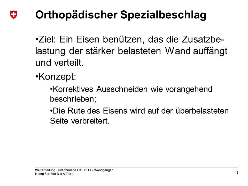 Orthopädischer Spezialbeschlag