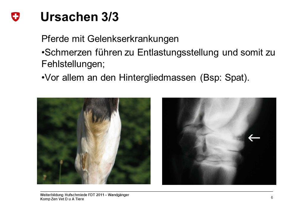 Ursachen 3/3 Pferde mit Gelenkserkrankungen