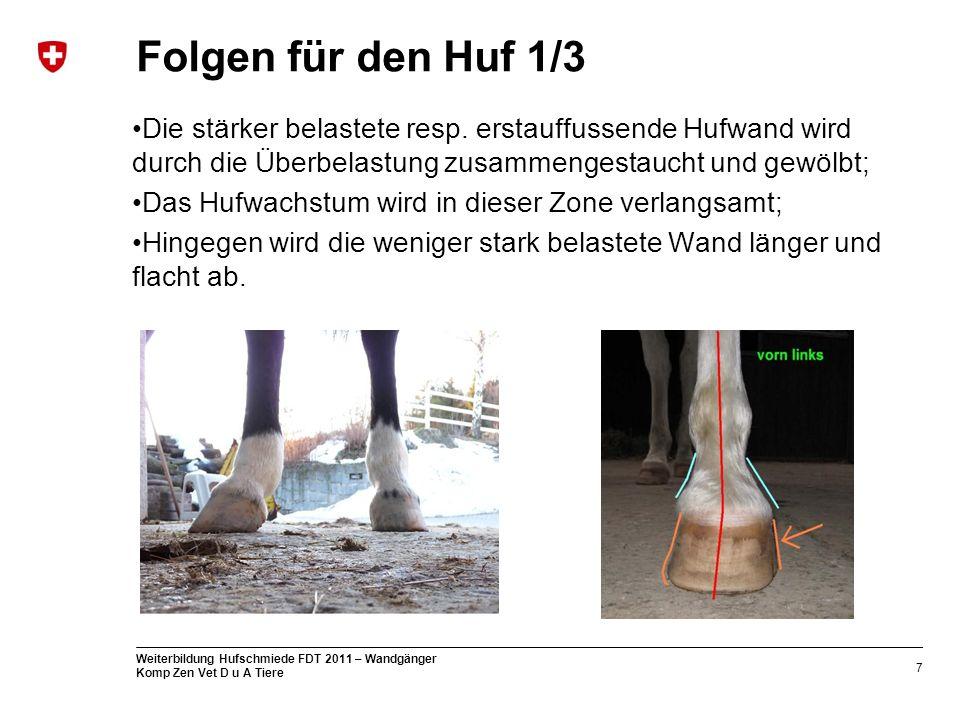Folgen für den Huf 1/3 Die stärker belastete resp. erstauffussende Hufwand wird durch die Überbelastung zusammengestaucht und gewölbt;