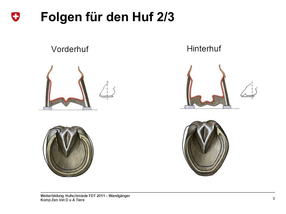 Folgen für den Huf 2/3 Hinterhuf Vorderhuf