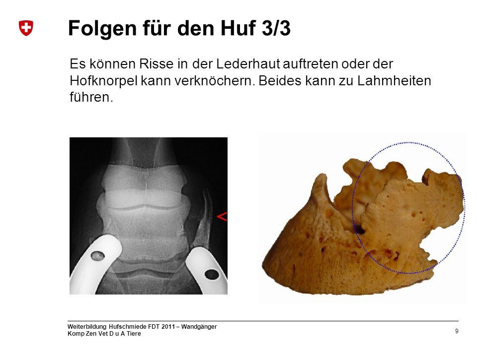 Folgen für den Huf 3/3 Es können Risse in der Lederhaut auftreten oder der Hofknorpel kann verknöchern.