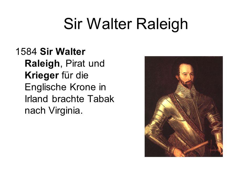 Sir Walter Raleigh 1584 Sir Walter Raleigh, Pirat und Krieger für die Englische Krone in Irland brachte Tabak nach Virginia.