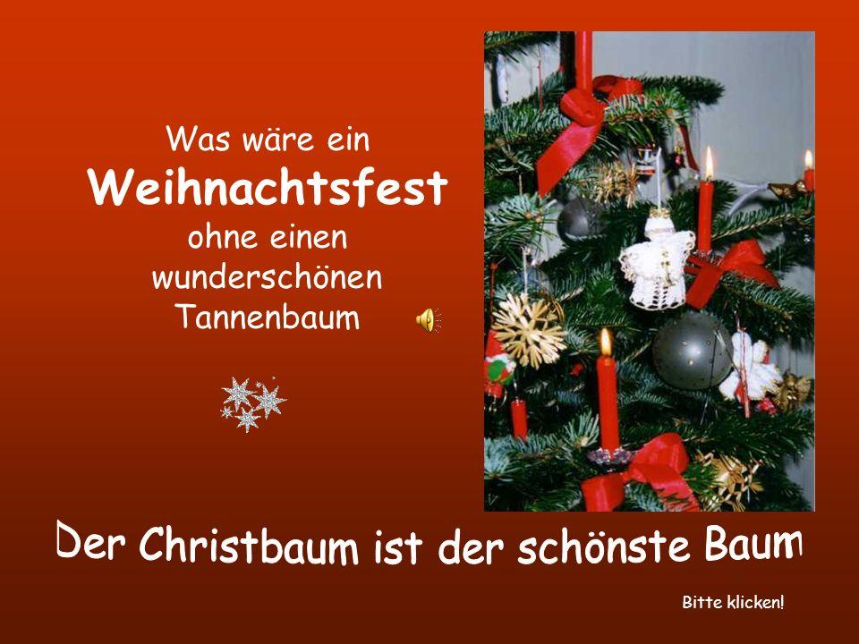 Was wäre ein Weihnachtsfest ohne einen wunderschönen Tannenbaum