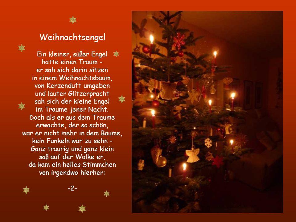 Weihnachtsengel Ein kleiner, süßer Engel hatte einen Traum - er sah sich darin sitzen in einem Weihnachtsbaum, von Kerzenduft umgeben und lauter Glitzerpracht sah sich der kleine Engel im Traume jener Nacht.