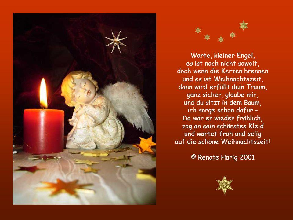 Warte, kleiner Engel, es ist noch nicht soweit, doch wenn die Kerzen brennen und es ist Weihnachtszeit, dann wird erfüllt dein Traum, ganz sicher, glaube mir, und du sitzt in dem Baum, ich sorge schon dafür - Da war er wieder fröhlich, zog an sein schönstes Kleid und wartet froh und selig auf die schöne Weihnachtszeit.