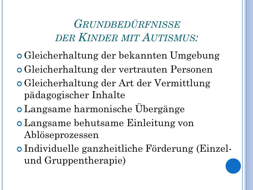 Grundbedürfnisse der Kinder mit Autismus: