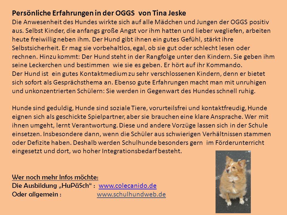 Persönliche Erfahrungen in der OGGS von Tina Jeske