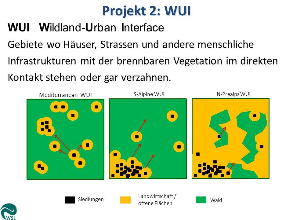 Projekt 2: WUI