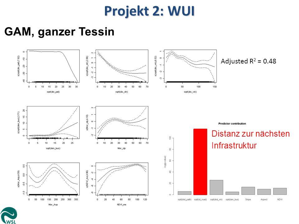 Projekt 2: WUI GAM, ganzer Tessin Distanz zur nächsten Infrastruktur