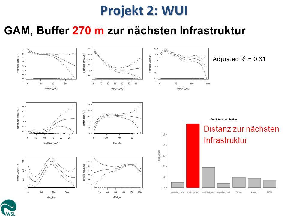 Projekt 2: WUI GAM, Buffer 270 m zur nächsten Infrastruktur